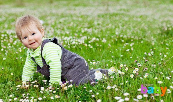 Интеллектуальное развитие ребенка 1-2 лет