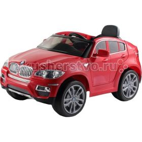 BMW X6 Barty