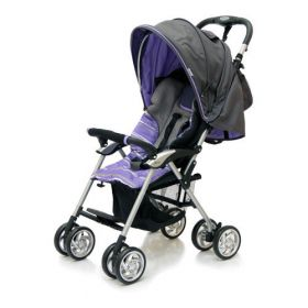 Jetem Прогулочная коляска Elegant (Dark Grey/Purple, полоска) Jetem